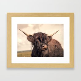 Long horn on the moors Framed Art Print