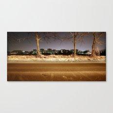 naturally artificial Canvas Print