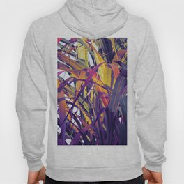 Bight Colorful Bamboo Hoody