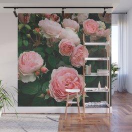 Dark Rose Wall Mural