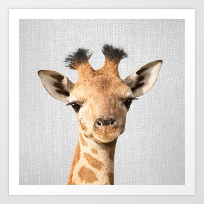 Baby Giraffe - Colorful Kunstdrucke