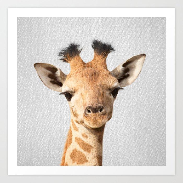 Baby Giraffe - Colorful Art Print