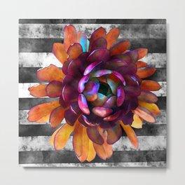 Orange Succulent Flower on Black n White Stripes Metal Print