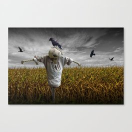 Scarecrow with Black Crows over a Cornfield Canvas Print