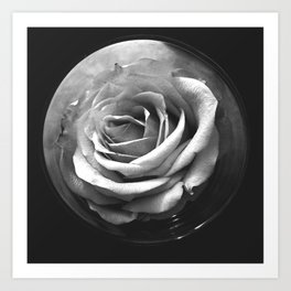 MOON ROSE Art Print
