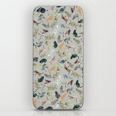 Marble Cats iPhone & iPod Skin