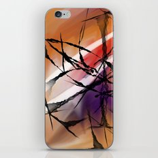 In the evening iPhone & iPod Skin