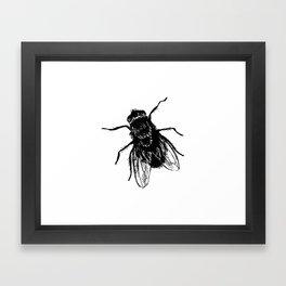 Drawing house-fly Framed Art Print
