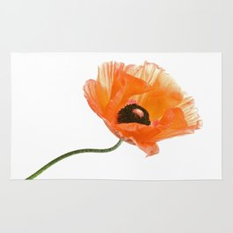 poppy flower IV Rug