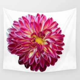 dahlia in spring season Wall Tapestry