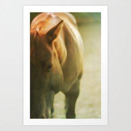 Gold Horse Art Print