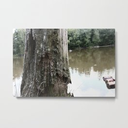 Old Tree at Lake Metal Print