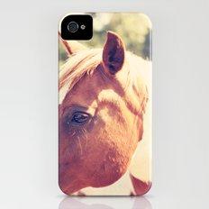 Pretty Paint Slim Case iPhone (4, 4s)