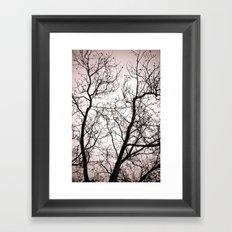 Branches in Winter Framed Art Print