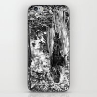creepy iPhone & iPod Skins featuring Creepy by Artist31