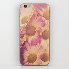 Sun Drenched Daisies iPhone & iPod Skin