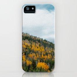 GOLD DUST iPhone Case