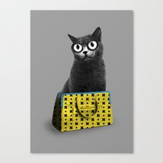 The Cat in the Bag of Tricks Canvas Print