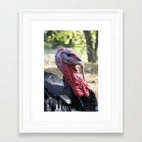 turkey Framed Art Prints featuring Turkey by Gerstnecker Design