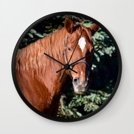 Miss Sadie - A horse, of course Wall Clock