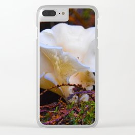 Forest Fungi in Revelstoke National Park, Canada Clear iPhone Case