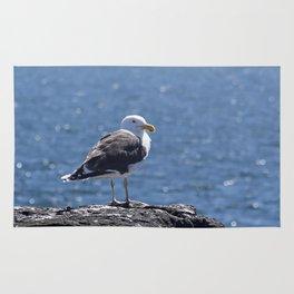 Seagull overlooking the ocean Rug