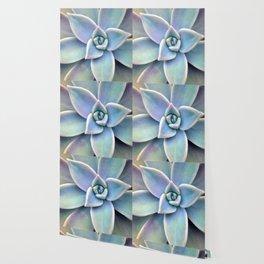 Pastel Succulent Wallpaper