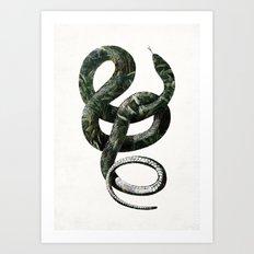 Jungle Snake Art Print