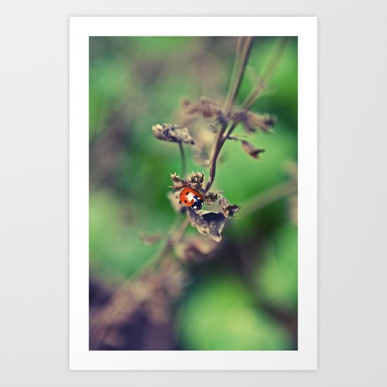 The Summer Bug Art Print