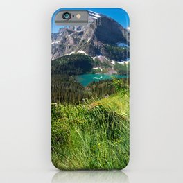 Picture USA Grinnell Lake Glacier Nature mountain park Forests Scenery Grass Mountains Parks forest landscape photography iPhone Case