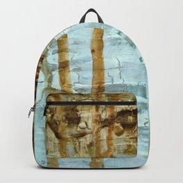 Sediment Backpack