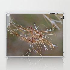 Flower Seed Heads Laptop & iPad Skin