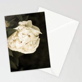 This Year's Love Stationery Cards