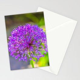 Purple + Blue Flower Stationery Cards