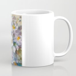Evening-Primrose  Coffee Mug