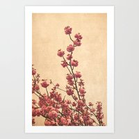 cherry blossoms Art Prints featuring cherry blossoms by Iris Lehnhardt - Photography
