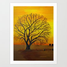 Rural sunset Art Print