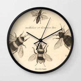 Naturalist Bees Wall Clock