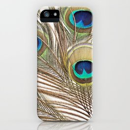 Exquisite Renewal iPhone Case