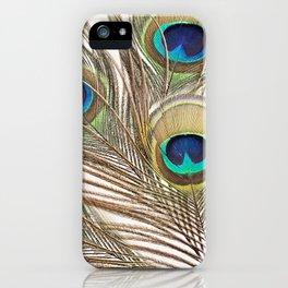 Exquisite Renewal iPhone Case