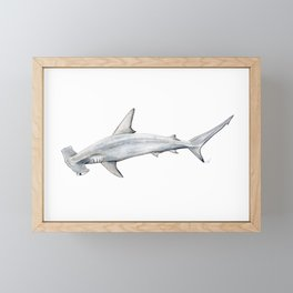 Hammerhead shark for shark lovers, divers and fishermen Framed Mini Art Print