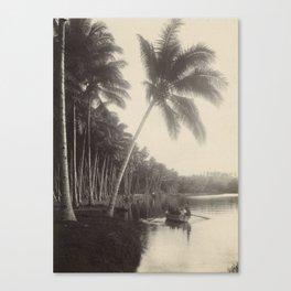 Vintage Palm Tree Photo Canvas Print