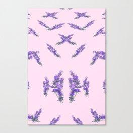 Lavanda Canvas Print