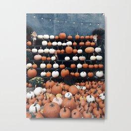 Pumpkins Everywhere Metal Print