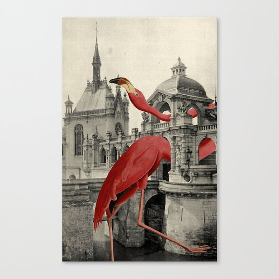 NUMBER 17 (FLAMINGO) Canvas Print