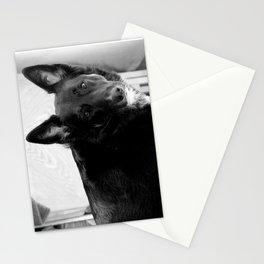 Mad Dog Beauty Stationery Cards