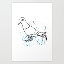 Bird Of Grey Art Print