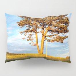 Tree In Spotlight Pillow Sham