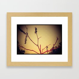 Christmas on the Beach Framed Art Print
