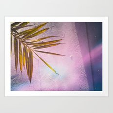 PinkPalm Art Print